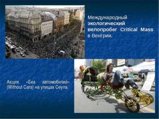 Акция «Без автомобилей» (Without Cars) наулицах Сеула. Международный экологи