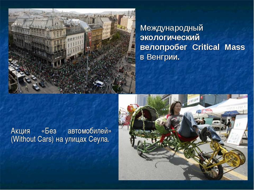 Акция «Без автомобилей» (Without Cars) наулицах Сеула. Международный экологи...