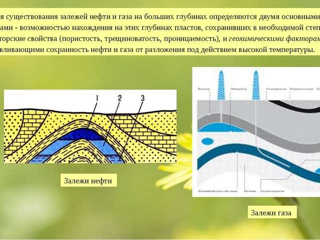 Условия существования залежей нефти и газа на больших глубинах определяются д...