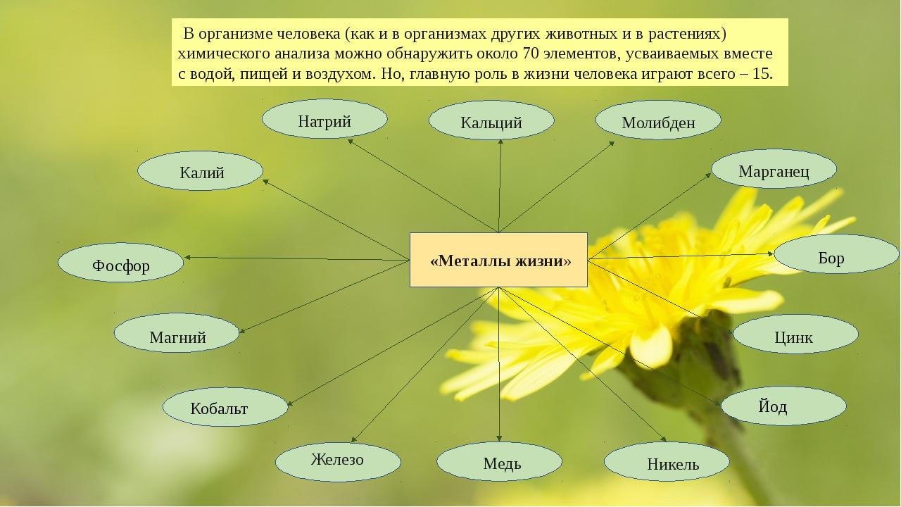 В организме человека (как и в организмах других животных и в растениях) хими...