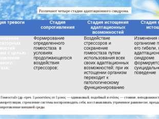 Различают четыре стадии адаптационного синдрома. * Гомеоста́з (др.-греч. ὁμοι