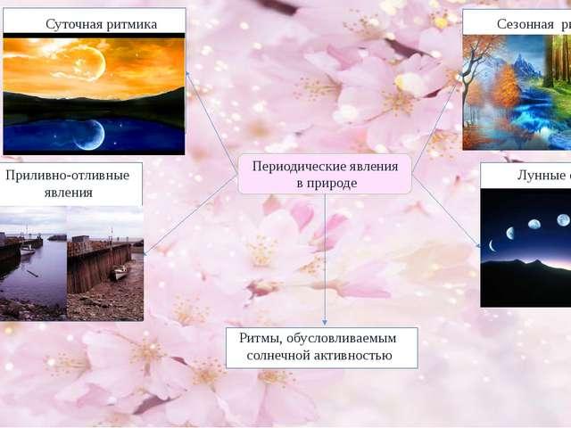 Периодические явления в природе Сезонная ритмика Суточная ритмика Приливно-о...