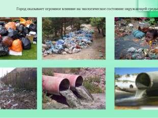 Город оказывает огромное влияние на экологическое состояние окружающей среды.