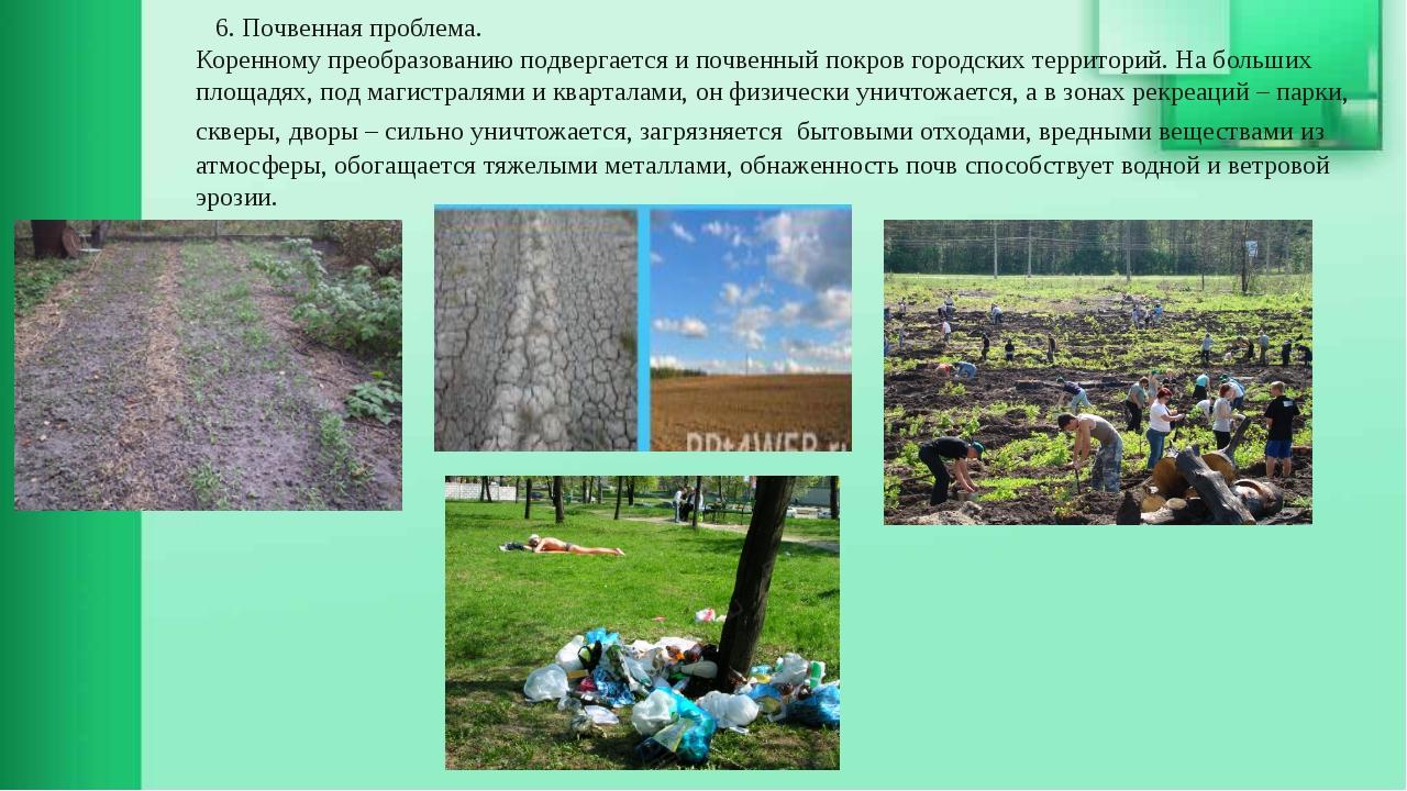 6. Почвенная проблема. Коренному преобразованию подвергается и почвенный пок...