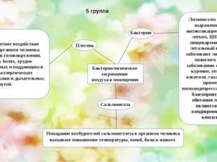 5 группа Бактериологическое загрязнение воздуха в помещении Бактерии Сальмон