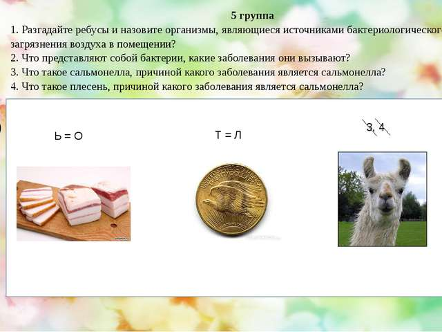 5 группа 1. Разгадайте ребусы и назовите организмы, являющиеся источниками б...
