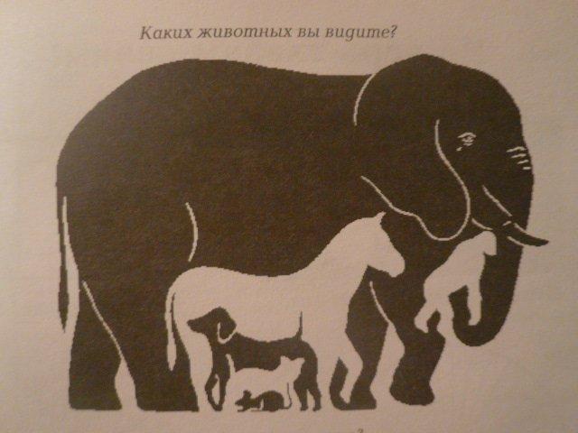 Загадка: Сколько животных вы видите на картинке. Правильный ответ дают всего лишь 1 человек из 10! / сколько животных видите от