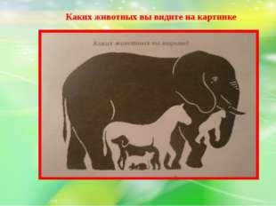 Каких животных вы видите на картинке