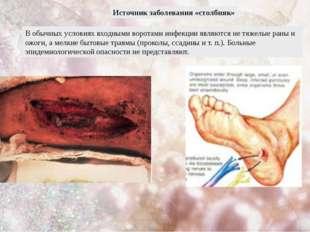 Источник заболевания «столбняк» В обычных условиях входными воротами инфекции