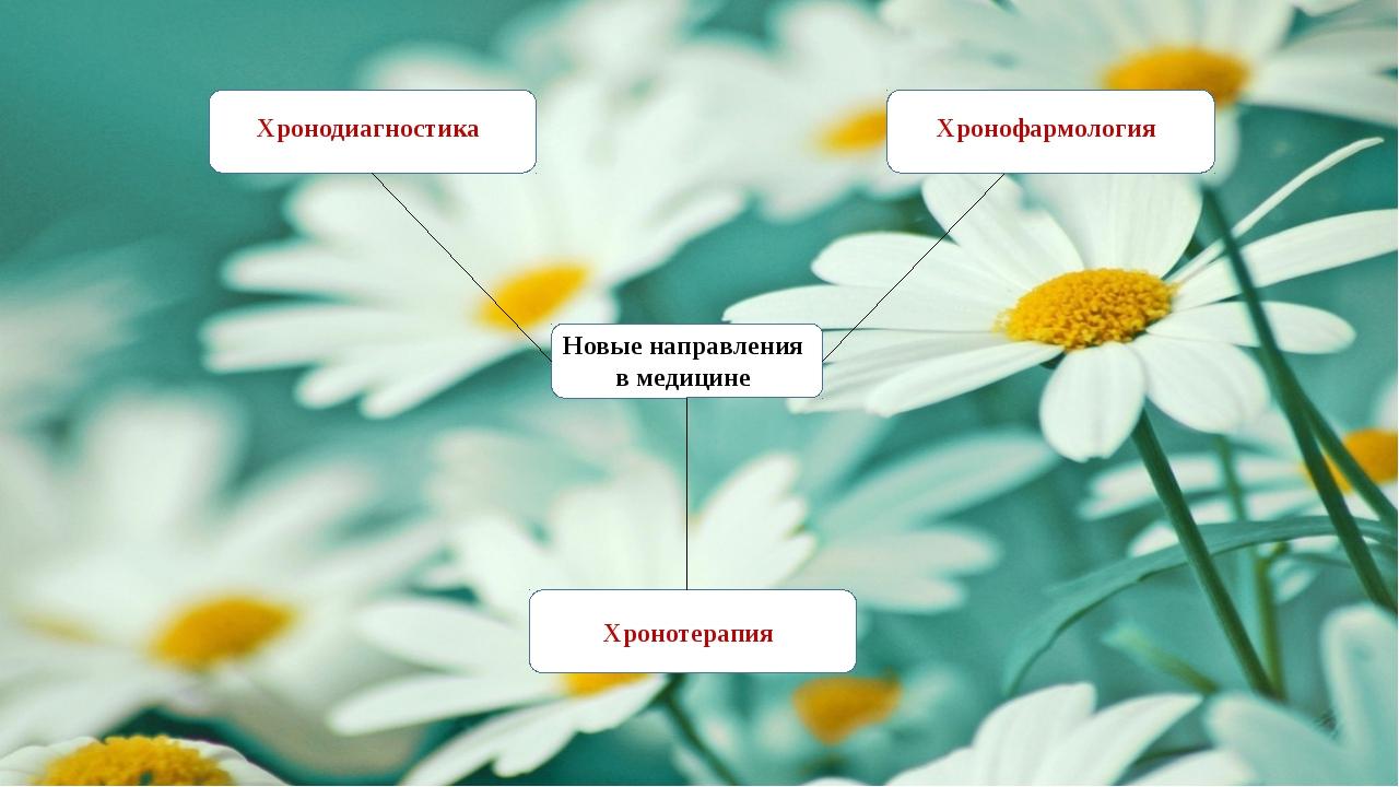 Новые направления в медицине Хронодиагностика Хронотерапия Хронофармология