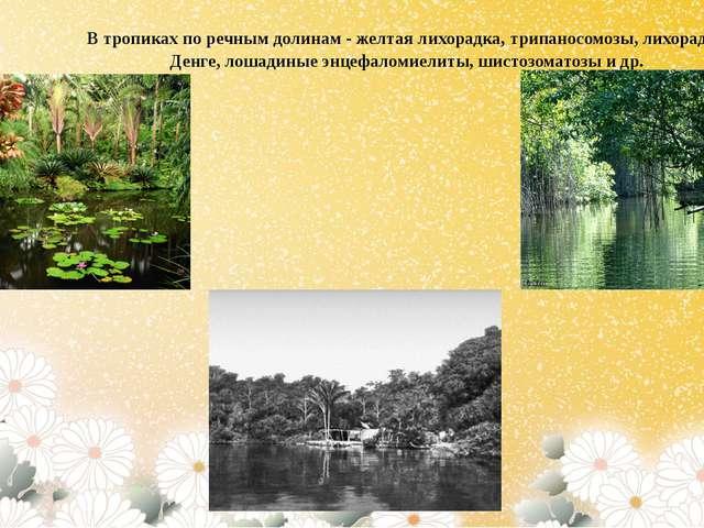 В тропиках по речным долинам - желтая лихорадка, трипаносомозы, лихорадка Ден...