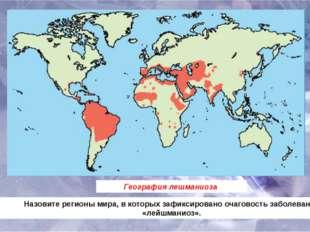 География лешманиоза Назовите регионы мира, в которых зафиксировано очаговост