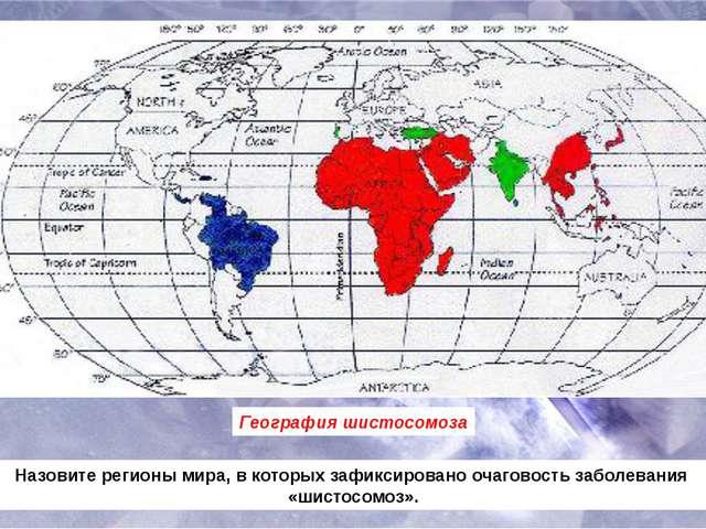 География шистосомоза Назовите регионы мира, в которых зафиксировано очаговос...