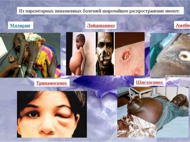 Из паразитарных инвазионных болезней широчайшее распространение имеют: Маляри...