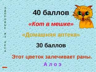 З Д О Р О В Ь Е И З Л Е С А 40 баллов «Кот в мешке» «Домашняя аптека» 30 балл