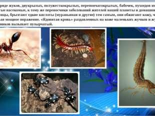 В отряде жуков, двукрылых, полужесткокрылых, перепончатокрылых, бабочек, пух