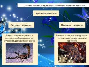 Отличие активно – ядовитые от пассивно – ядовитых животных Ядовитые животные