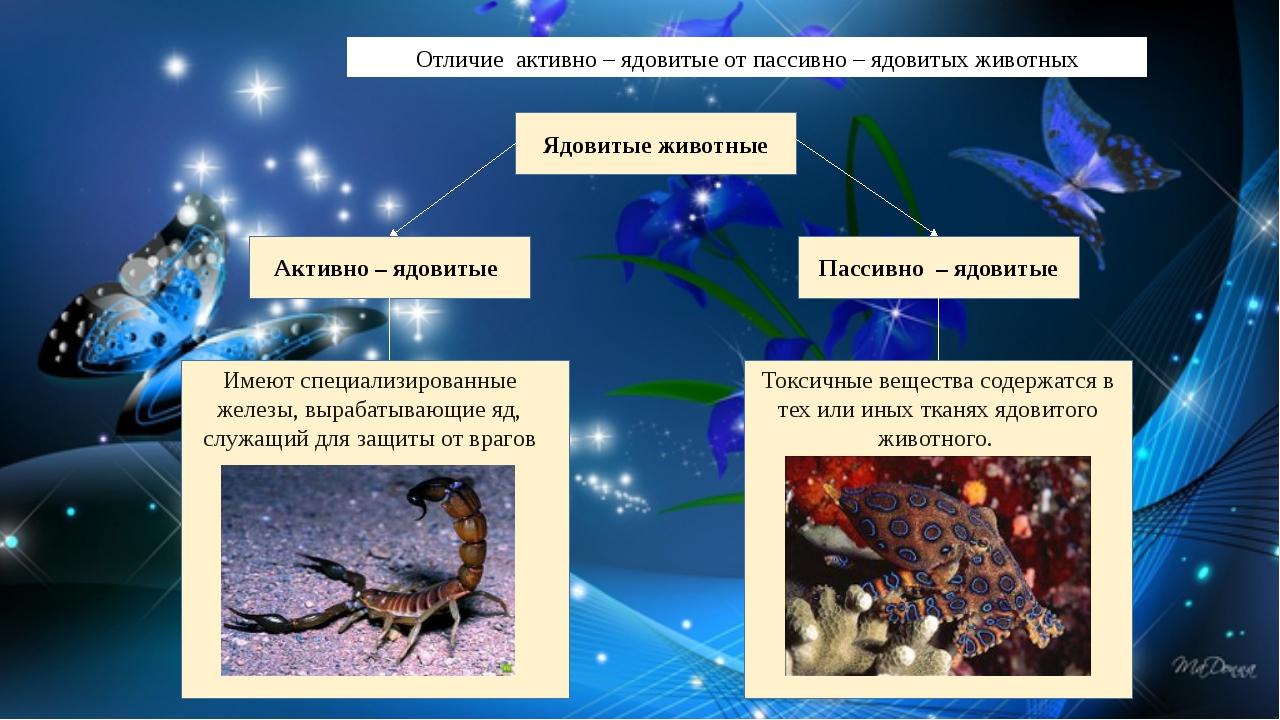 Отличие активно – ядовитые от пассивно – ядовитых животных Ядовитые животные...