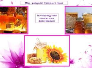 Мёд – результат пчелиного труда Почему мёд тоже относиться к фитотерапии?