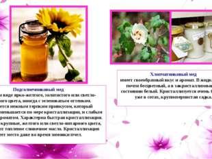 Подсолнечниковый мед в жидком виде ярко-желтого, золотистого или светло-янта