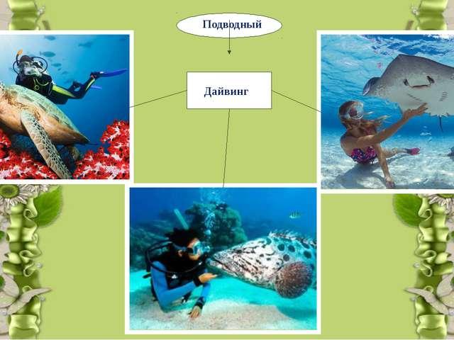 Подводный Дайвинг