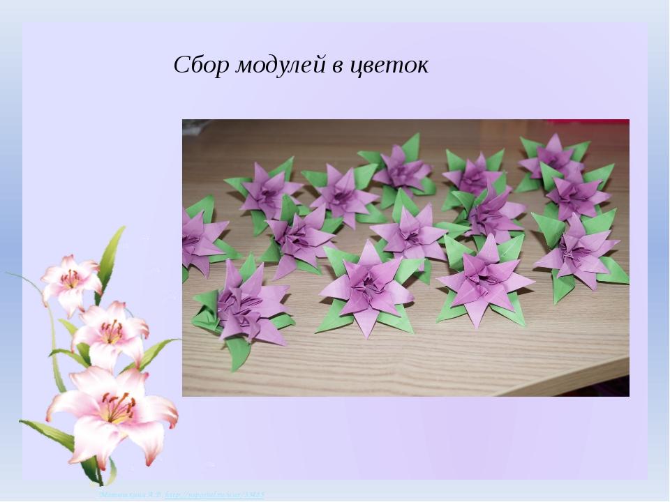 Сбор модулей в цветок Матюшкина А.В. http://nsportal.ru/user/33485 Матюшкина...