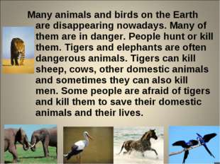 Many animals and birds on the Earth are disappearing nowadays. Many of them a