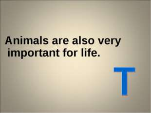 Animals are also very important for life.