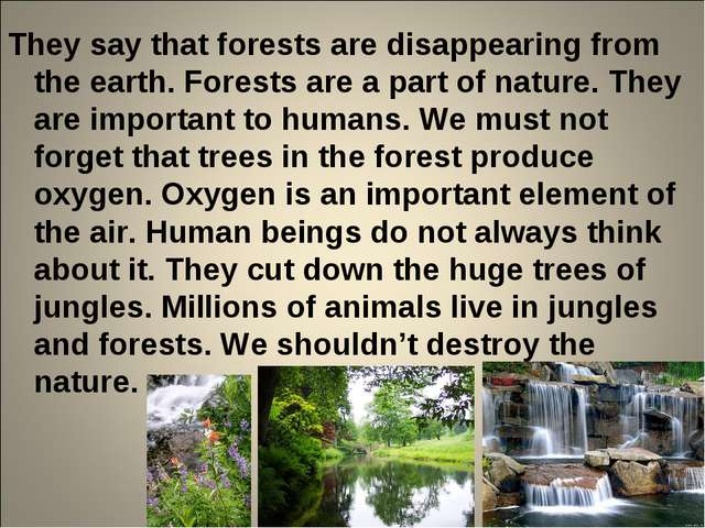 They say that forests are disappearing from the earth. Forests are a part of...