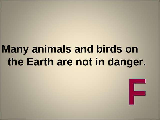 Many animals and birds on the Earth are not in danger.