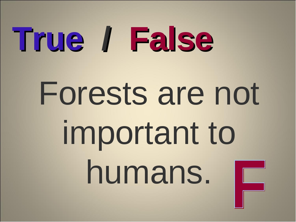 Forests are not important to humans. True / False