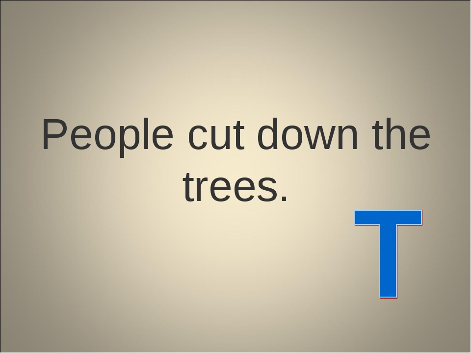 People cut down the trees.