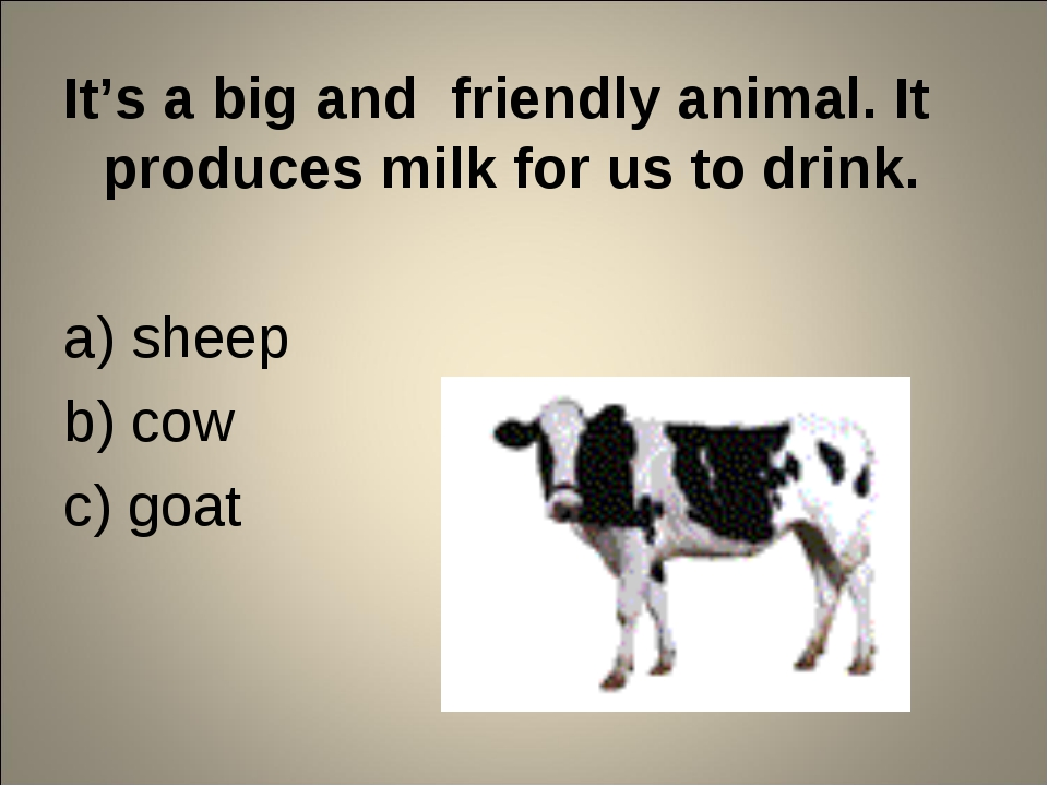 It's a big and friendly animal. It produces milk for us to drink. a) sheep b)...
