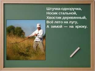 Штучка-одноручка, Носик стальной, Хвостик деревянный, Всё лето на лугу, А зим