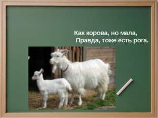 Как корова, но мала, Правда, тоже есть рога.