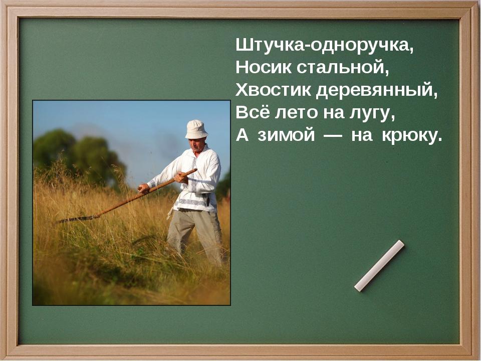 Штучка-одноручка, Носик стальной, Хвостик деревянный, Всё лето на лугу, А зим...