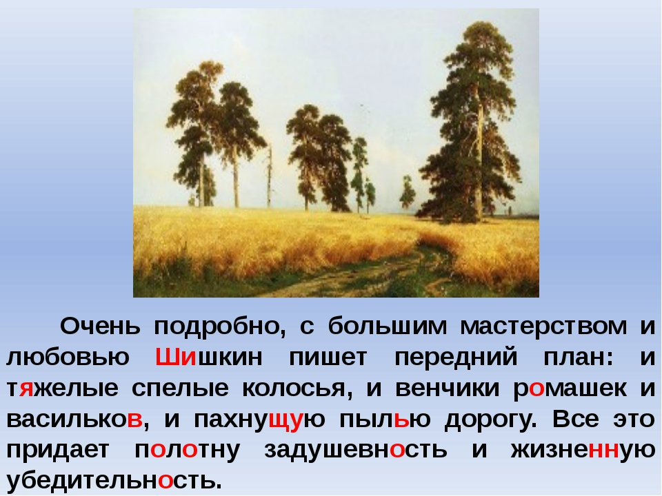 Очень подробно, с большим мастерством и любовью Шишкин пишет передний план:...