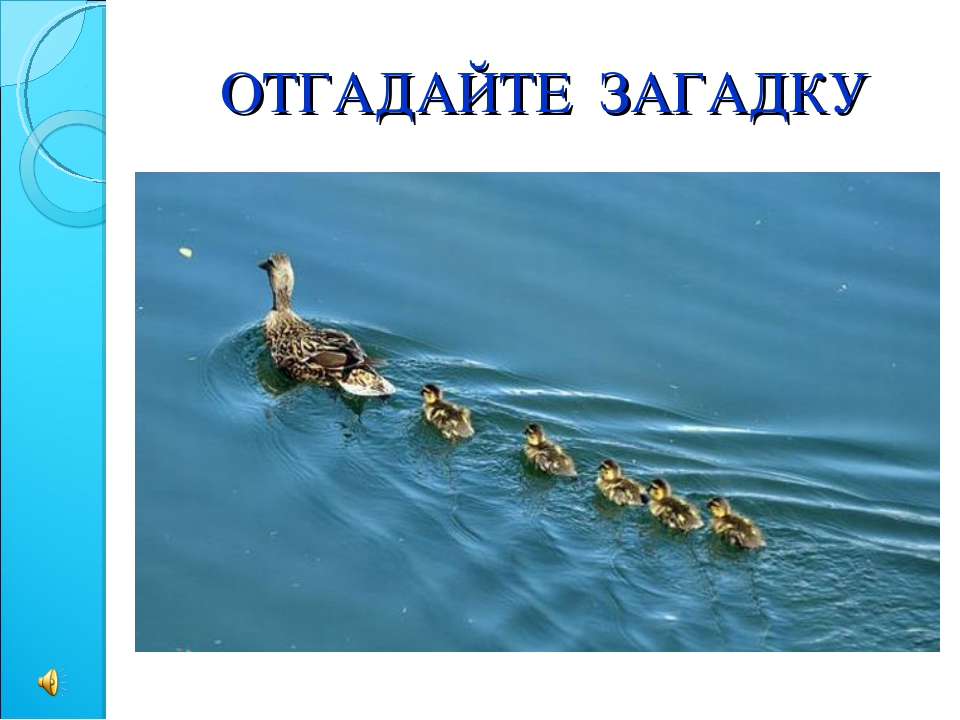 Вдоль по речке, по водице, Плывет лодок вереница, Впереди корабль идет, За с...
