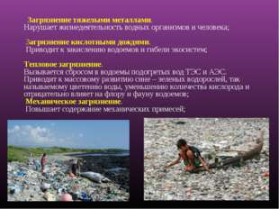 Загрязнение тяжелыми металлами. Нарушает жизнедеятельность водных организмо