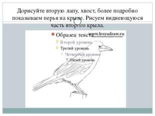 Дорисуйте вторую лапу, хвост, более подробно показываем перья на крыле. Рисуе