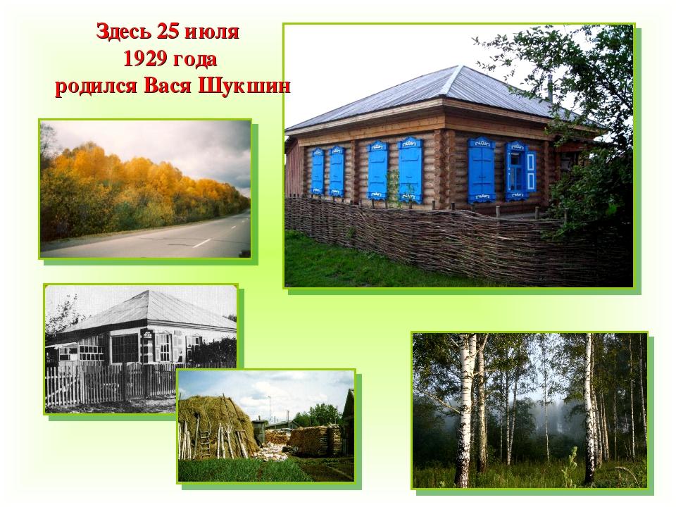 Здесь 25 июля 1929 года родился Вася Шукшин