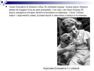 Также Елизавета II обожает собак. Ее любимая порода - вельш корги. Первого ще