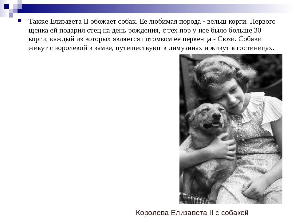 Также Елизавета II обожает собак. Ее любимая порода - вельш корги. Первого ще...
