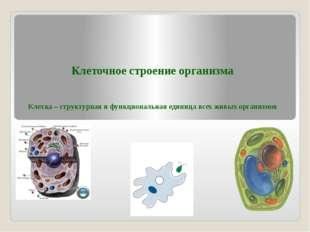 Клеточное строение организма Клетка – структурная и функциональная единица вс