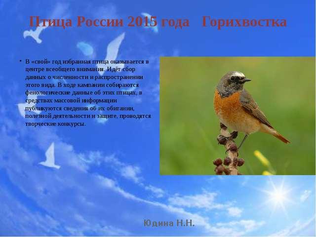 Птица России 2015 года Горихвостка В «свой» год избранная птица оказывается в...