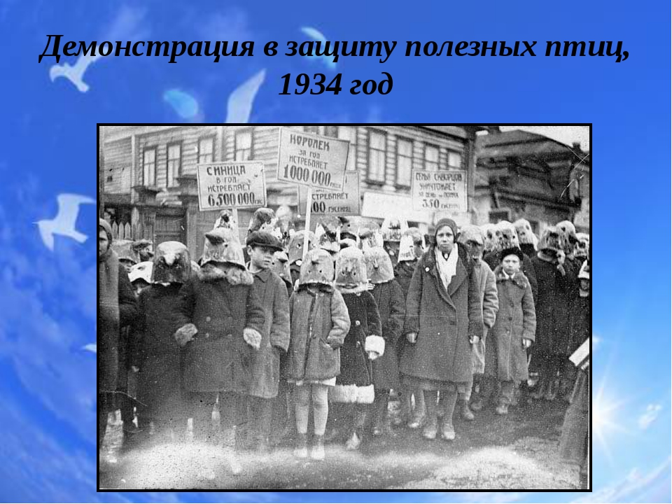 Демонстрация взащиту полезных птиц, 1934 год