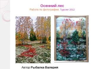 Осенний лес Работа по фотографии. Турслет 2012 Автор Рыбалка Валерия