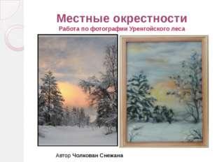 Местные окрестности Работа по фотографии Уренгойского леса Автор Чолкован Сне