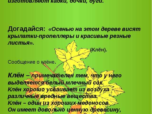 Деревья легко ломаются от сильного ветра. Осиновые деревья используются главн...