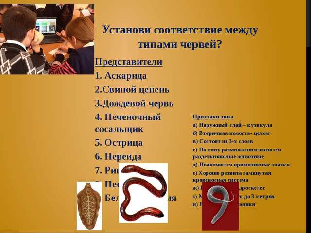 Установи соответствие между типами червей? Представители 1. Аскарида 2.Свиной...